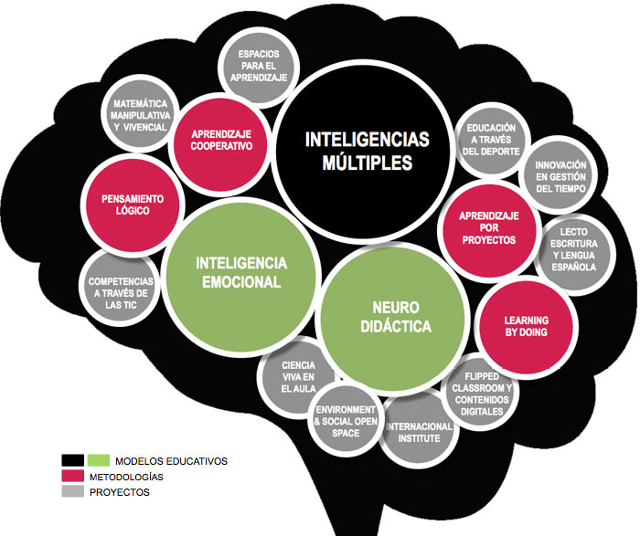 inteligencias-multiples-antana-educacion